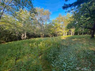 Photo 7: Lot Seaview Road in Seaview: 305-Richmond County / St. Peters & Area Vacant Land for sale (Highland Region)  : MLS®# 202124486