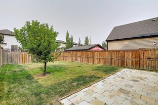 Photo 42: 159 Copperstone Grove SE in Calgary: Copperfield Detached for sale : MLS®# A1138819