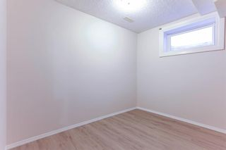 Photo 46: 64 Whitmire Road NE in Calgary: Whitehorn Detached for sale : MLS®# A1055737