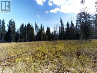 Photo 5: 53018 RANGE RD 175 in Rural Yellowhead County: Vacant Land for sale : MLS®# AW38443