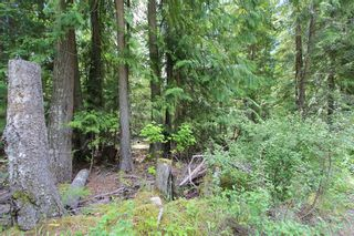 Photo 4: Lot 96 Crowfoot Drive in Anglemont: North Shuswap Land Only for sale (Shuswap)  : MLS®# 10158355