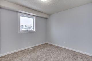 Photo 26: 189 Macewan Valley Road NW in Calgary: MacEwan Glen Detached for sale : MLS®# A1146712