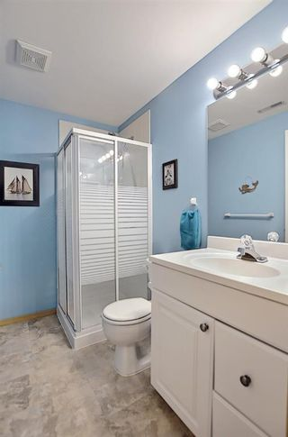 Photo 37: 131 Bridlewood Circle SW in Calgary: Bridlewood Detached for sale : MLS®# A1126092