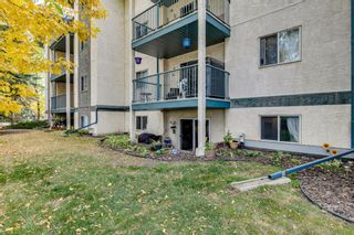 Photo 24: #106 10 Dover Point SE in Calgary: Dover Apartment for sale : MLS®# A1152097