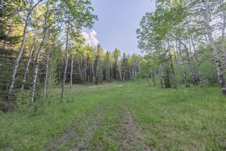 Photo 25: 231175 Bracken Road in Rural Rocky View County: Rural Rocky View MD Land for sale : MLS®# A1116621