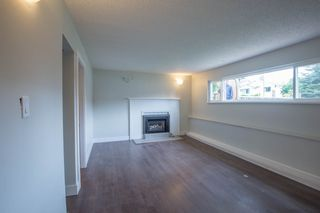 Photo 13: 22939 CLIFF Avenue in Maple Ridge: East Central House for sale : MLS®# R2112470