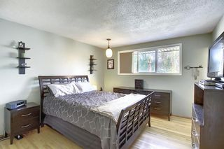 Photo 10: 155 HUNTFORD Road NE in Calgary: Huntington Hills Detached for sale : MLS®# A1016441