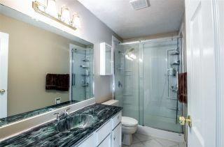 Photo 6: 51121 Range Road 270: Rural Parkland County House for sale : MLS®# E4248084