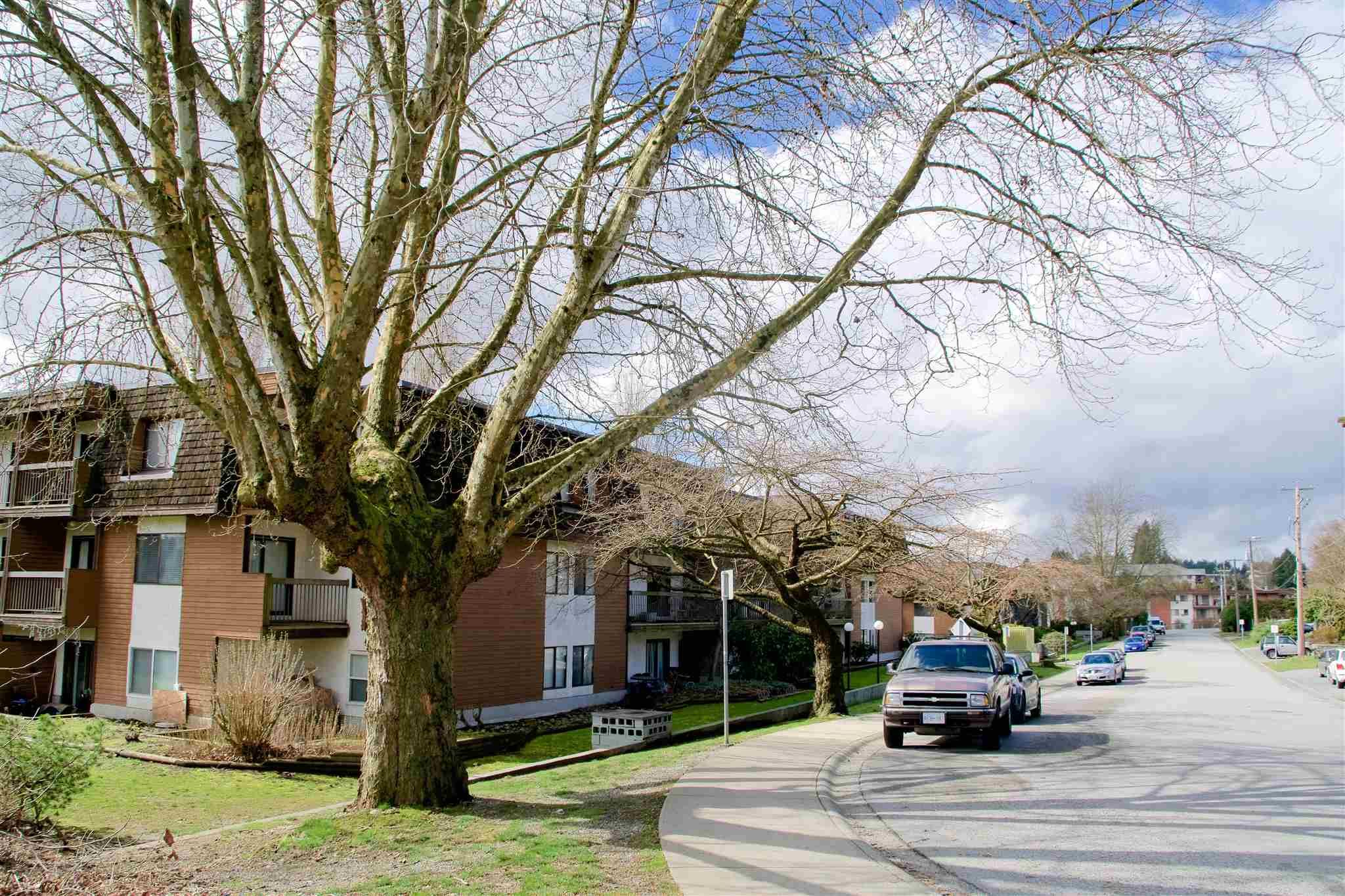 Main Photo: 313 33870 FERN Street in Abbotsford: Central Abbotsford Condo for sale : MLS®# R2599642