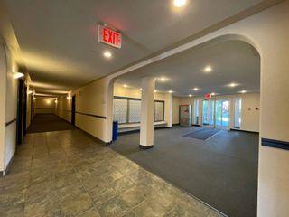 Photo 9: 533 11325 83 Street in Edmonton: Zone 05 Condo for sale : MLS®# E4256939