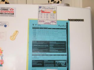Photo 37: 35 240 G & M ROAD in Kamloops: South Kamloops Manufactured Home/Prefab for sale : MLS®# 150337