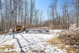 Photo 50: 79 Rolling Acres Drive in Rural Rocky View County: Rural Rocky View MD Detached for sale : MLS®# A1097943