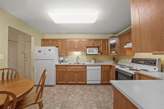 """Photo 4: 211 11601 227 Street in Maple Ridge: East Central Condo for sale in """"Castle Mount"""" : MLS®# R2581285"""