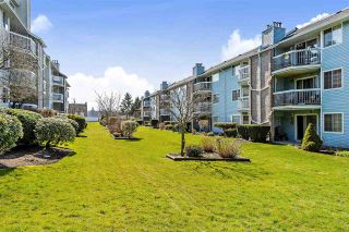 Photo 12: 209 11510 225 Street in Maple Ridge: East Central Condo for sale : MLS®# R2446932