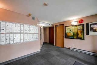 """Photo 5: 311 45744 SPADINA Avenue in Chilliwack: Chilliwack W Young-Well Condo for sale in """"Applewood Court"""" : MLS®# R2581802"""