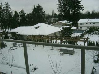 "Photo 6: 22255 122ND Ave in Maple Ridge: West Central Condo for sale in ""MAGNOLIA GATE"" : MLS®# V591902"