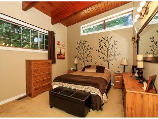 Photo 18: 10549 RIVER Road in Delta: Nordel House for sale (N. Delta)  : MLS®# F1419662