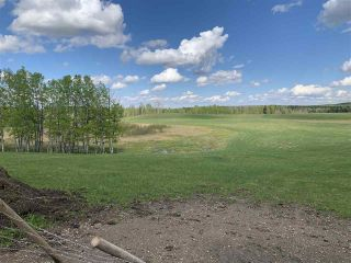 Photo 5: 53000 Range Road 73: Rural Parkland County Rural Land/Vacant Lot for sale : MLS®# E4202764