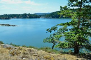 Photo 22: 1095 Nose Point Rd in : GI Salt Spring Land for sale (Gulf Islands)  : MLS®# 881923
