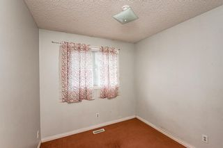 Photo 31: 48 Whitworth Way NE in Calgary: Whitehorn Detached for sale : MLS®# A1147094