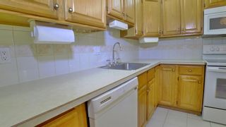 Photo 9: 304 521 57 Avenue SW in Calgary: Windsor Park Apartment for sale : MLS®# A1009068