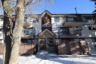 Photo 20: 3 1895 St Mary's Road in Winnipeg: River Park South Condominium for sale (2F)  : MLS®# 202028957