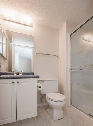 Photo 21: 1111 Millrise Point SW in Calgary: Millrise Apartment for sale : MLS®# A1043747