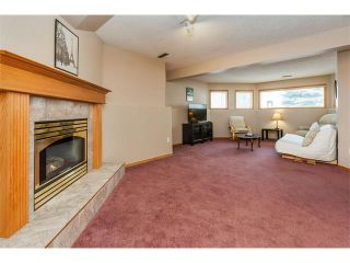Photo 20: 317 CITADEL HILLS Circle NW in Calgary: Citadel House for sale : MLS®# C4112677