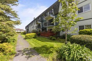 """Photo 22: 360 8151 RYAN Road in Richmond: South Arm Condo for sale in """"MAYFAIR COURT"""" : MLS®# R2580681"""