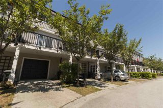 Photo 18: 8 11060 BARNSTON VIEW Road in Pitt Meadows: South Meadows Townhouse for sale : MLS®# R2281623