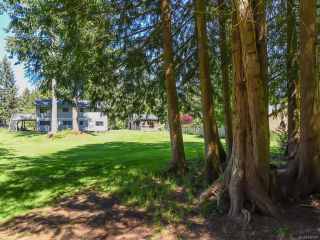 Photo 20: 4981 Childs Rd in COURTENAY: CV Courtenay North House for sale (Comox Valley)  : MLS®# 840349