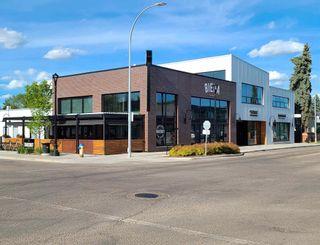 Photo 46: 9545 74 Avenue in Edmonton: Zone 17 House for sale : MLS®# E4246998