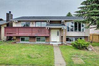 Photo 1: 155 Templevale Road NE in Calgary: Temple Detached for sale : MLS®# A1119165