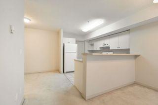 Photo 9: 102 11408 108 Avenue in Edmonton: Zone 08 Condo for sale : MLS®# E4253242