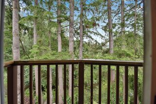 """Photo 21: 5 20848 DOUGLAS Crescent in Langley: Langley City Townhouse for sale in """"brookside terrace"""" : MLS®# R2611248"""