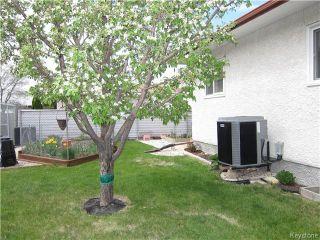Photo 15: 968 Beecher Avenue in Winnipeg: Residential for sale (4F)  : MLS®# 1712001
