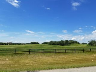 Photo 3: #43-25527- Twp Road 511A Road: Rural Parkland County Rural Land/Vacant Lot for sale : MLS®# E4226843