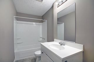 Photo 40: 379 Coventry Road NE in Calgary: Coventry Hills Detached for sale : MLS®# A1139977
