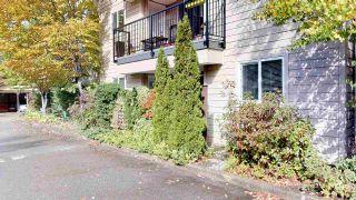 """Photo 17: A102 40100 WILLOW Crescent in Squamish: Garibaldi Estates Condo for sale in """"Diamondhead Place"""" : MLS®# R2408654"""