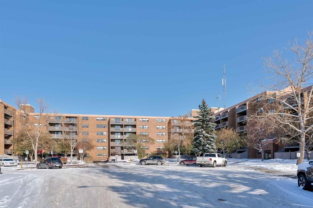 Main Photo: 407 30 Mchugh Court NE in Calgary: Mayland Heights Apartment for sale : MLS®# A1045028