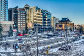 Photo 28: 450 310 8 Street SW in Calgary: Eau Claire Apartment for sale : MLS®# A1060648
