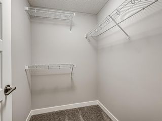 Photo 33: 417 Chinook Gate Square SW: Airdrie Detached for sale : MLS®# A1096458
