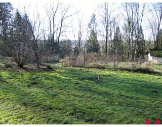 Photo 2: 34242 MACLURE Road in Abbotsford: Central Abbotsford House for sale : MLS®# F2611501