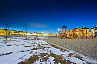 Photo 31: 169 SKYVIEW RANCH DR NE in Calgary: Skyview Ranch House for sale : MLS®# C4278111