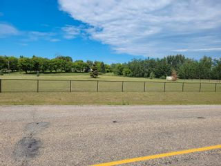 Photo 9: 1A 51310 RGE RD 261: Rural Parkland County Rural Land/Vacant Lot for sale : MLS®# E4251082