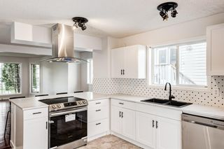 Photo 7: 18 Erin Meadow Close SE in Calgary: Erin Woods Detached for sale : MLS®# A1143099