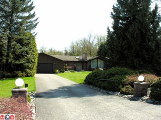 Photo 1: 4346 Bridgeview Street in Abbotsford: Abbotsford West House for sale : MLS®# F1110657