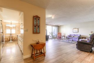 Photo 14: 301 1229 Cameron Avenue SW in Calgary: Lower Mount Royal Apartment for sale : MLS®# A1095141
