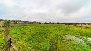 """Photo 10: 21377 CRUSH Crescent in Langley: Willoughby Heights House for sale in """"Milner Farmland"""" : MLS®# R2424924"""