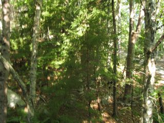 Photo 3: 9A Thornhill Drive in Spryfield: 7-Spryfield Vacant Land for sale (Halifax-Dartmouth)  : MLS®# 202124316
